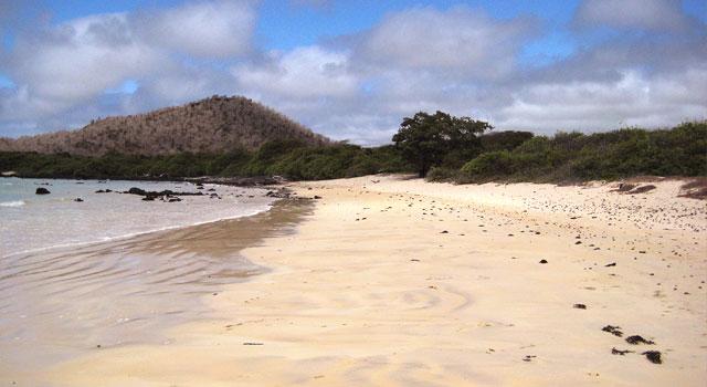 Garrapatero beach picture la peregrina galápagos