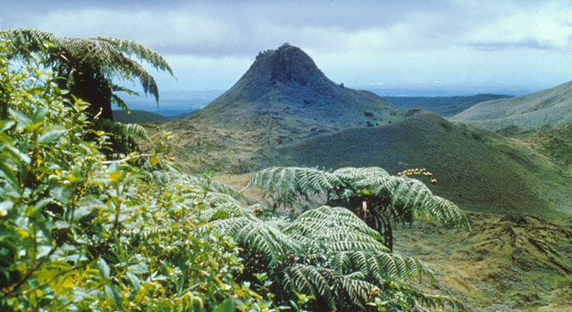 puntudo cerro crocker galapagos santa cruz