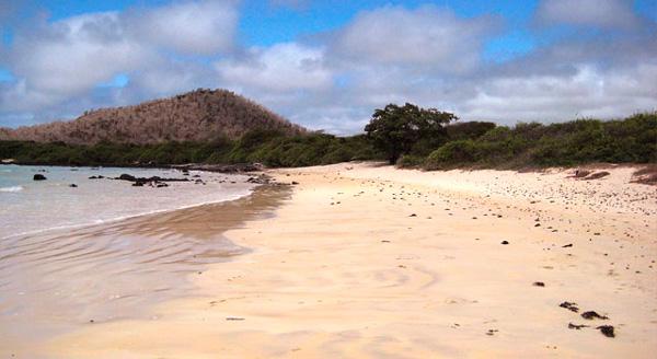 Garrapatero Beach - Galapagos Islands